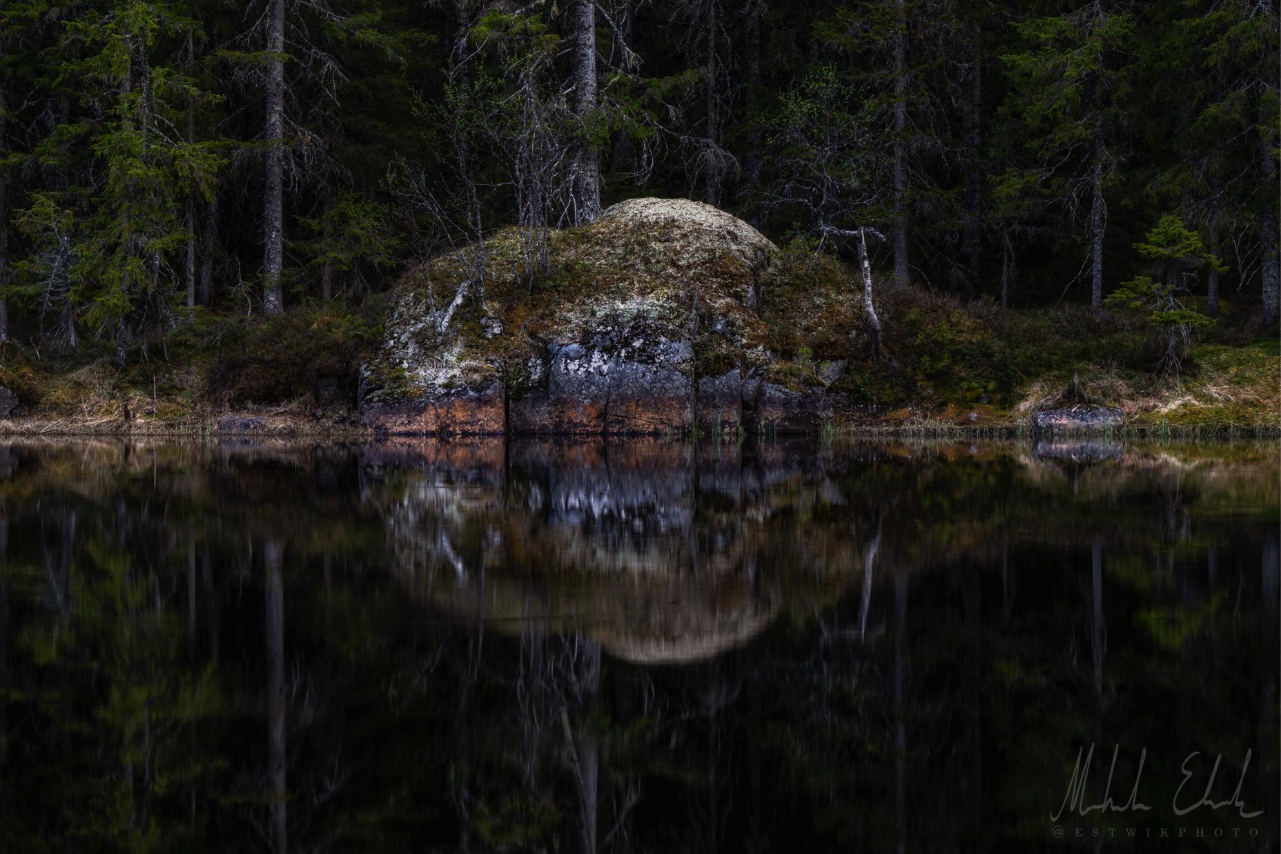 Trollskogen, inspirerad John Bauer