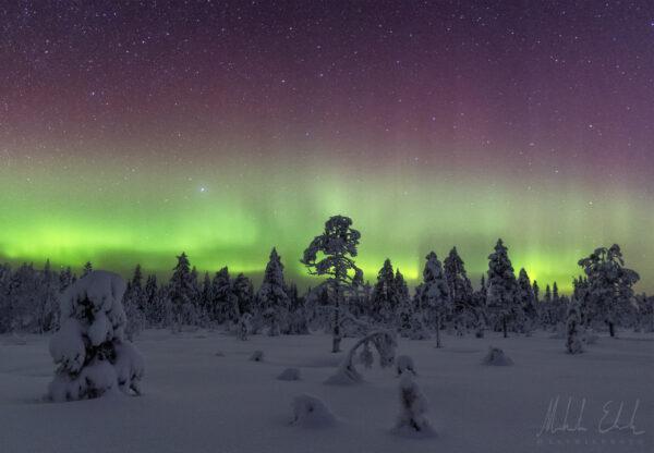 Norrsken i snölandskap