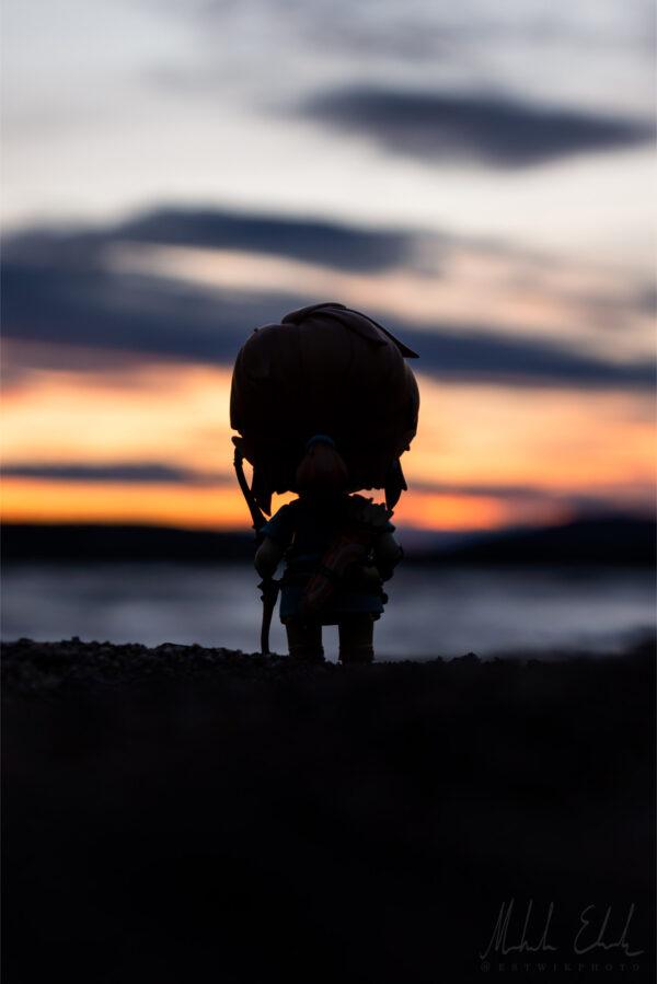 Link i solnedgång