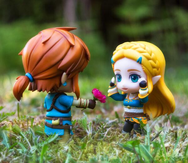 Link ger Zelda en blomma