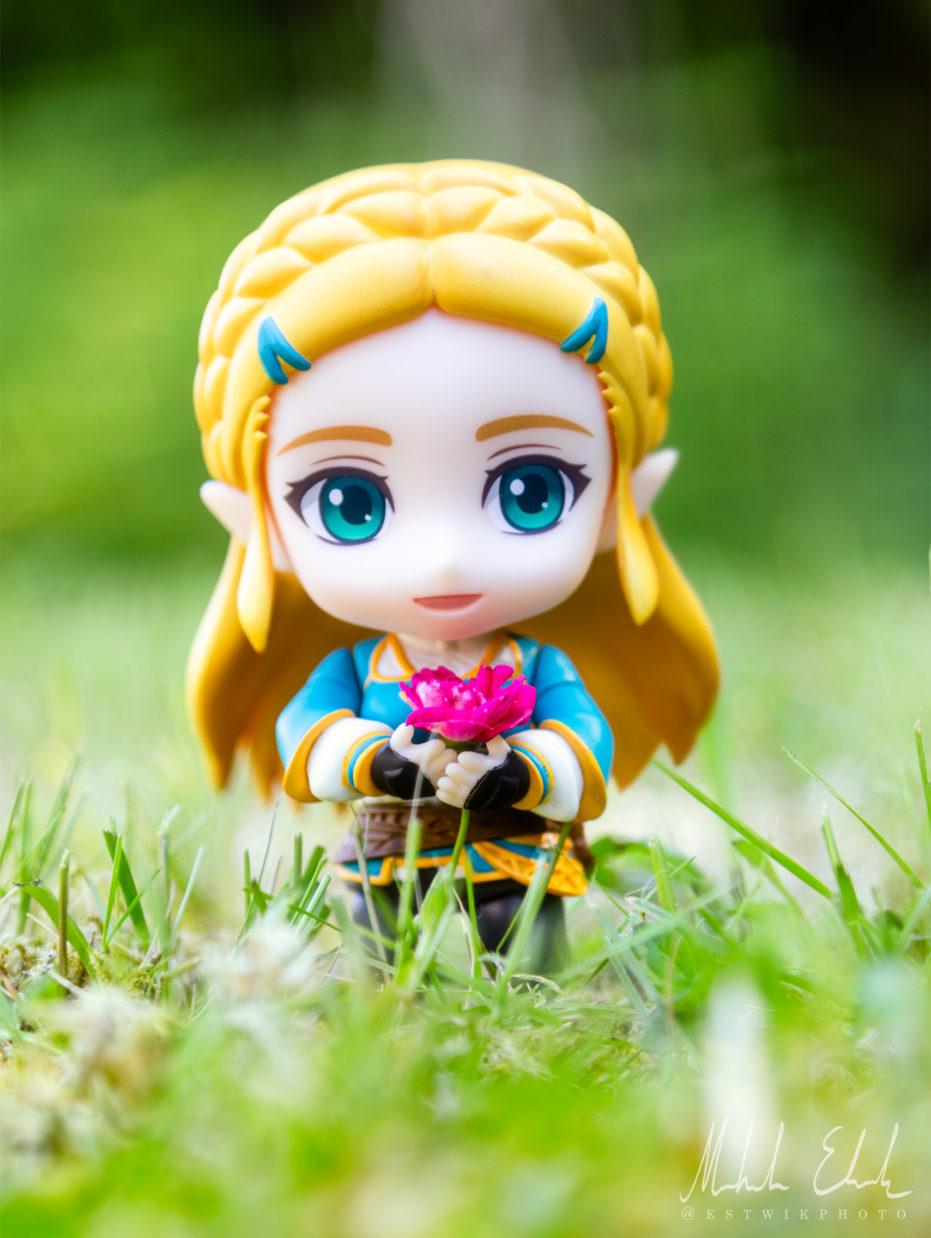 Zelda har fått en blomma av Link