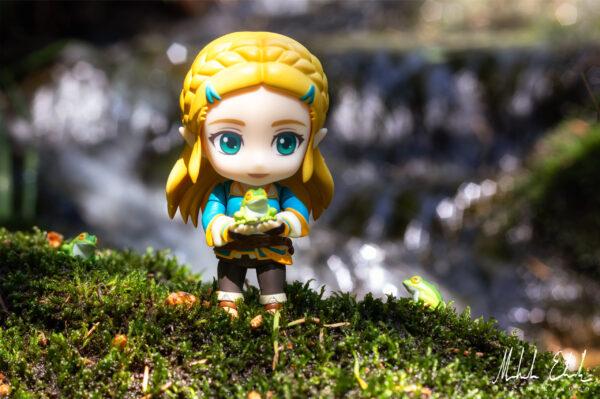 Zelda bland grodor